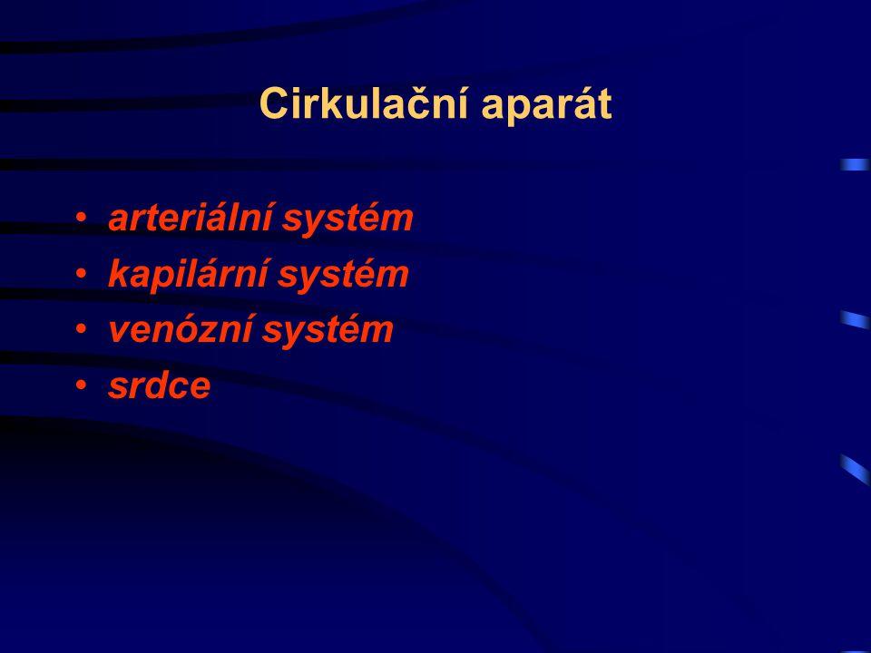 Cirkulační aparát arteriální systém kapilární systém venózní systém