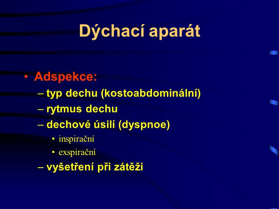 Dýchací aparát Adspekce: typ dechu (kostoabdominální) rytmus dechu