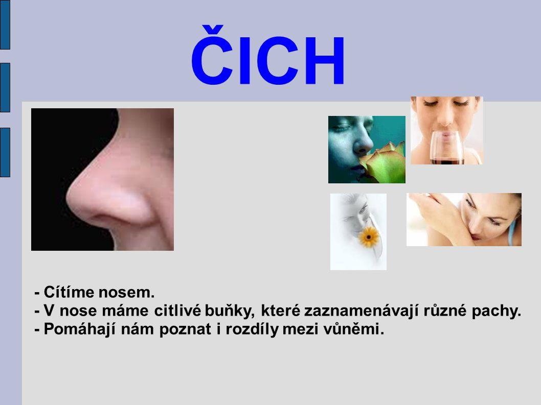 ČICH - Cítíme nosem. - V nose máme citlivé buňky, které zaznamenávají různé pachy.