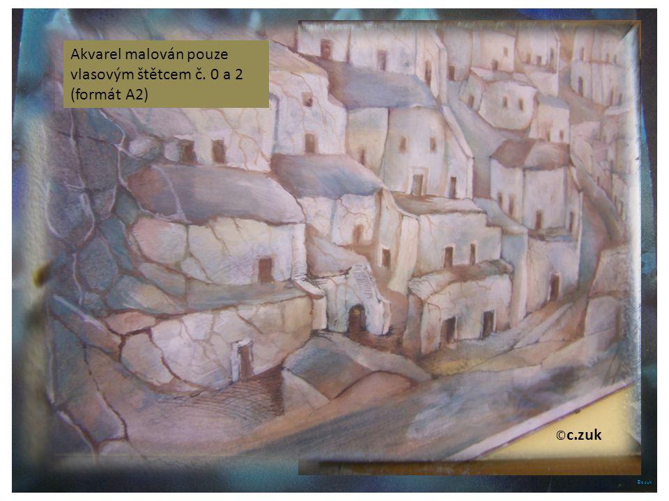 Akvarel malován pouze vlasovým štětcem č. 0 a 2 (formát A2)