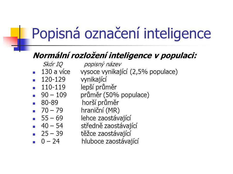Popisná označení inteligence