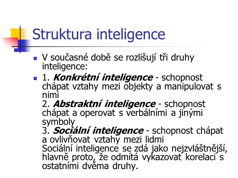 Struktura inteligence