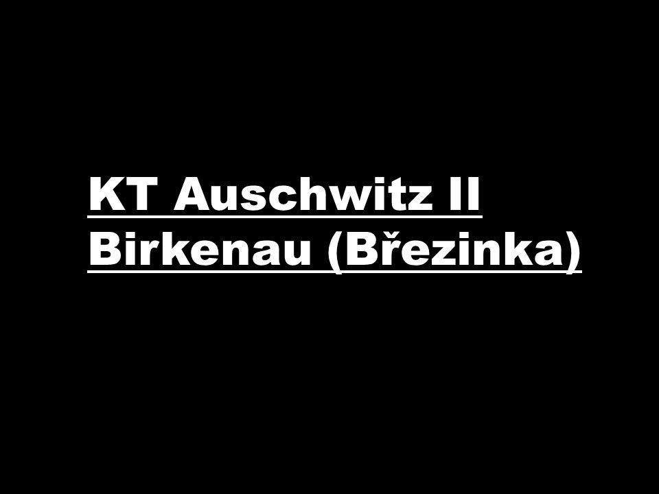 KT Auschwitz II Birkenau (Březinka)