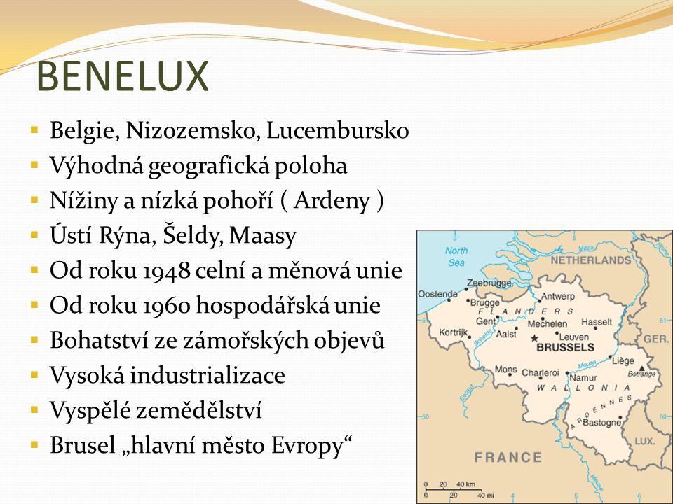 BENELUX Belgie, Nizozemsko, Lucembursko Výhodná geografická poloha