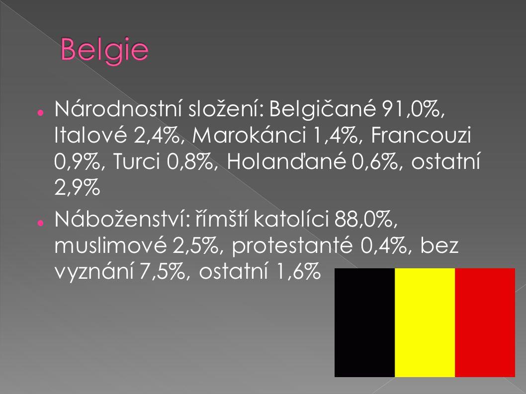 Belgie Národnostní složení: Belgičané 91,0%, Italové 2,4%, Marokánci 1,4%, Francouzi 0,9%, Turci 0,8%, Holanďané 0,6%, ostatní 2,9%