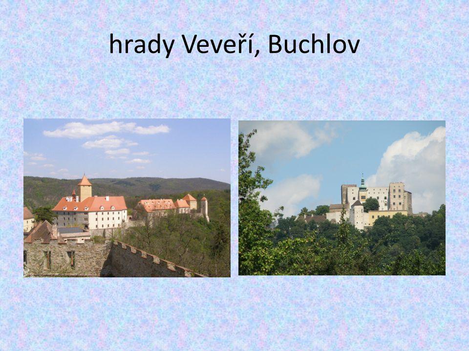 hrady Veveří, Buchlov