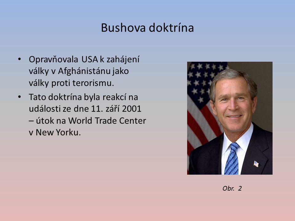 Bushova doktrína Opravňovala USA k zahájení války v Afghánistánu jako války proti terorismu.