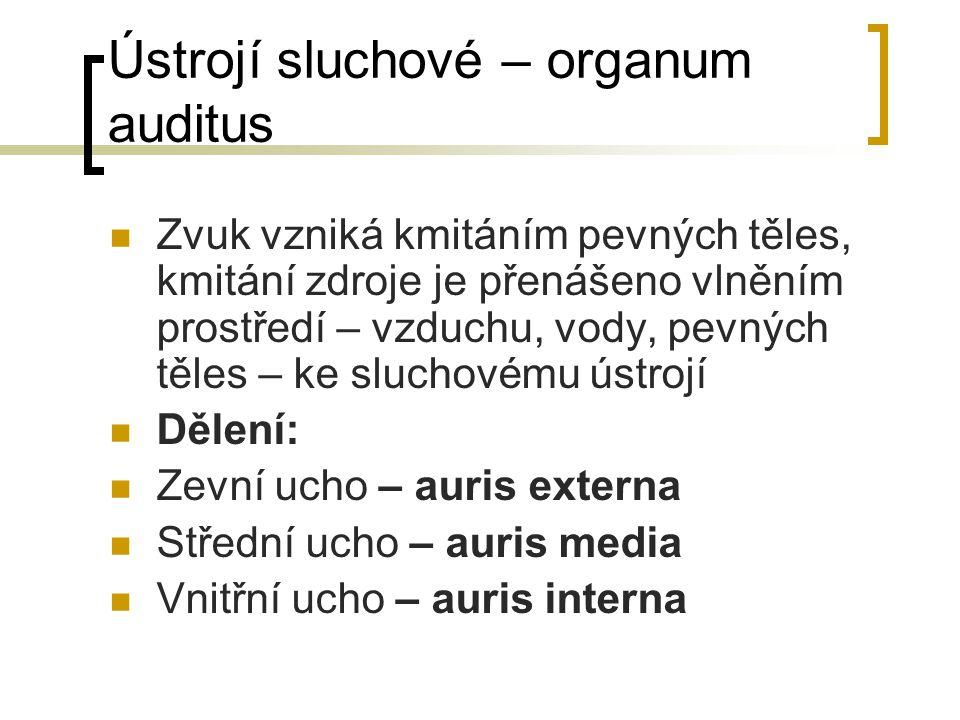 Ústrojí sluchové – organum auditus