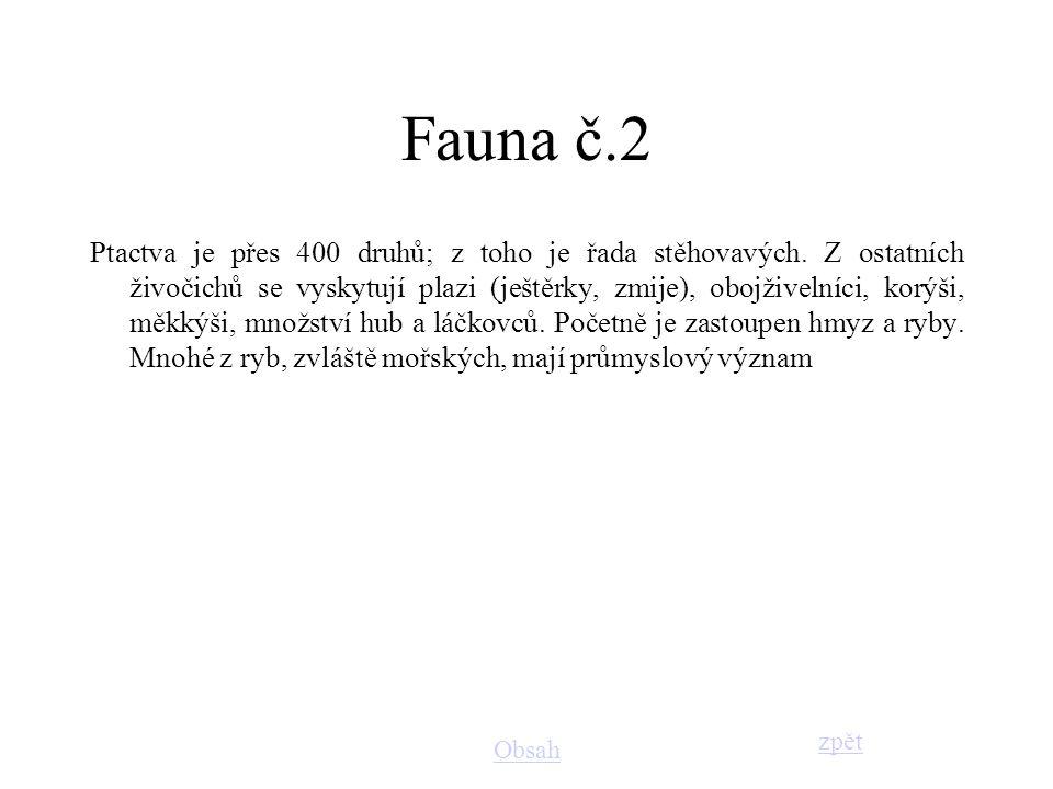 Fauna č.2