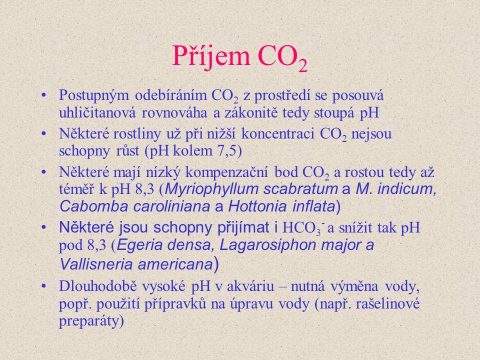 Příjem CO2 Postupným odebíráním CO2 z prostředí se posouvá uhličitanová rovnováha a zákonitě tedy stoupá pH.
