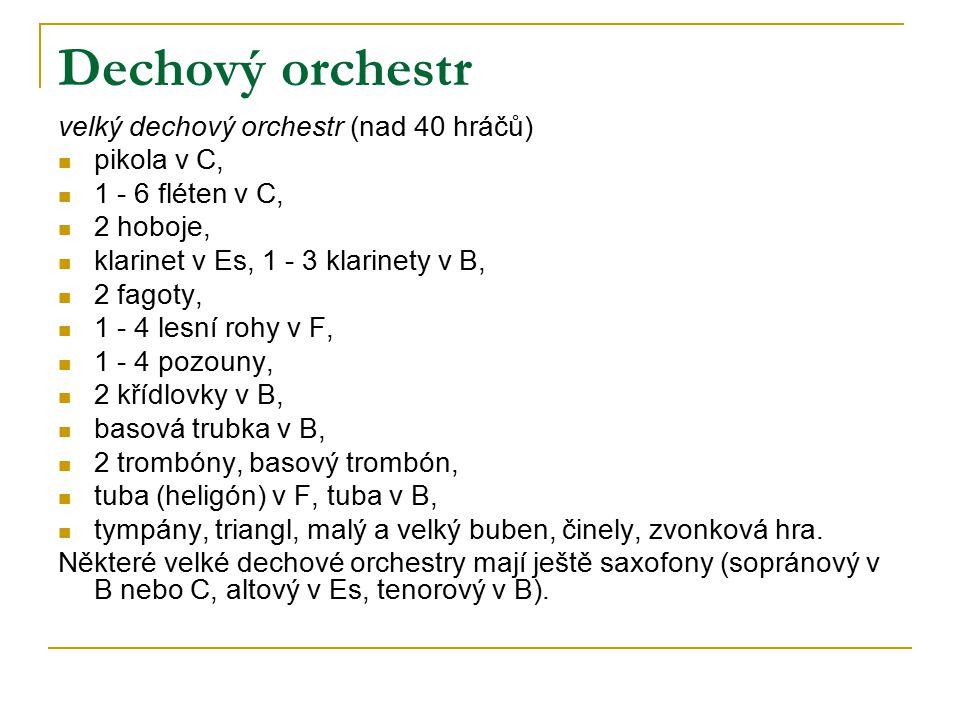 Dechový orchestr velký dechový orchestr (nad 40 hráčů) pikola v C,
