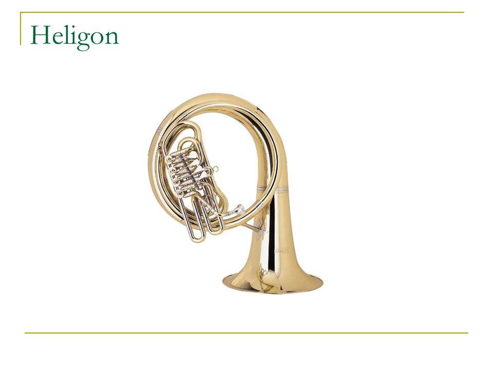 Heligon