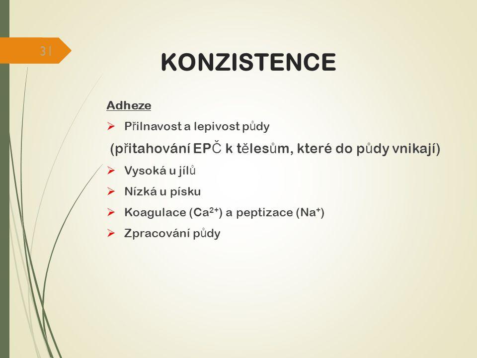 KONZISTENCE (přitahování EPČ k tělesům, které do půdy vnikají) Adheze