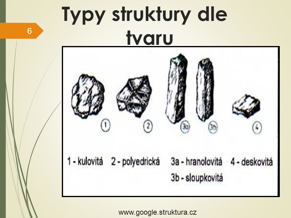 Typy struktury dle tvaru