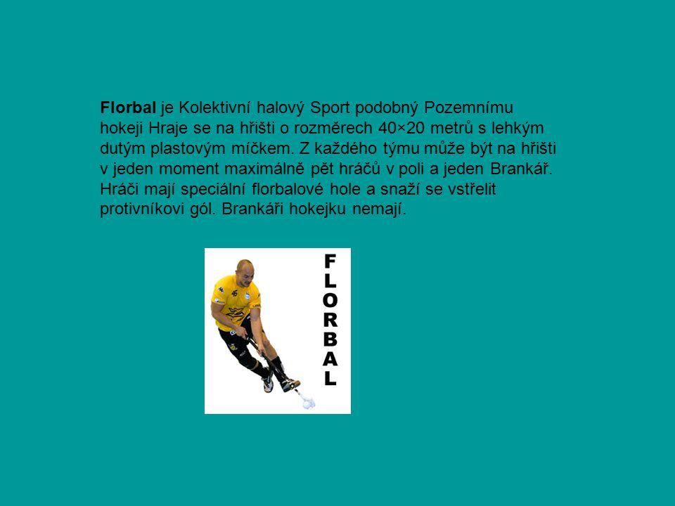 Florbal je Kolektivní halový Sport podobný Pozemnímu hokeji Hraje se na hřišti o rozměrech 40×20 metrů s lehkým dutým plastovým míčkem.