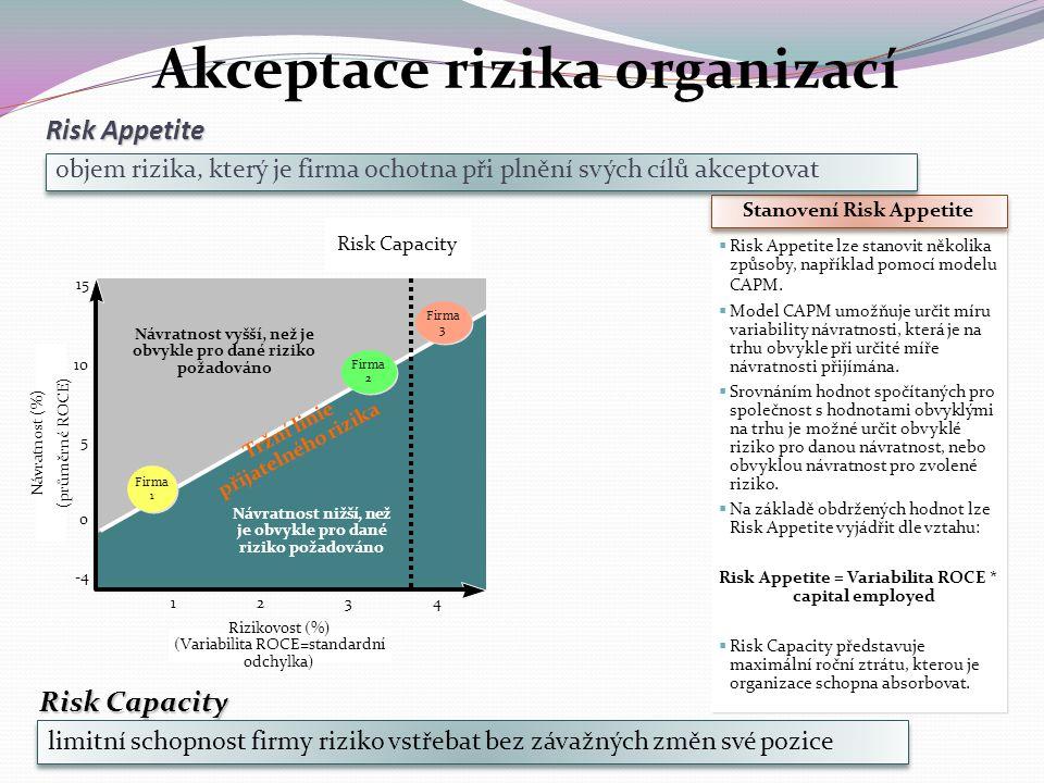 Akceptace rizika organizací