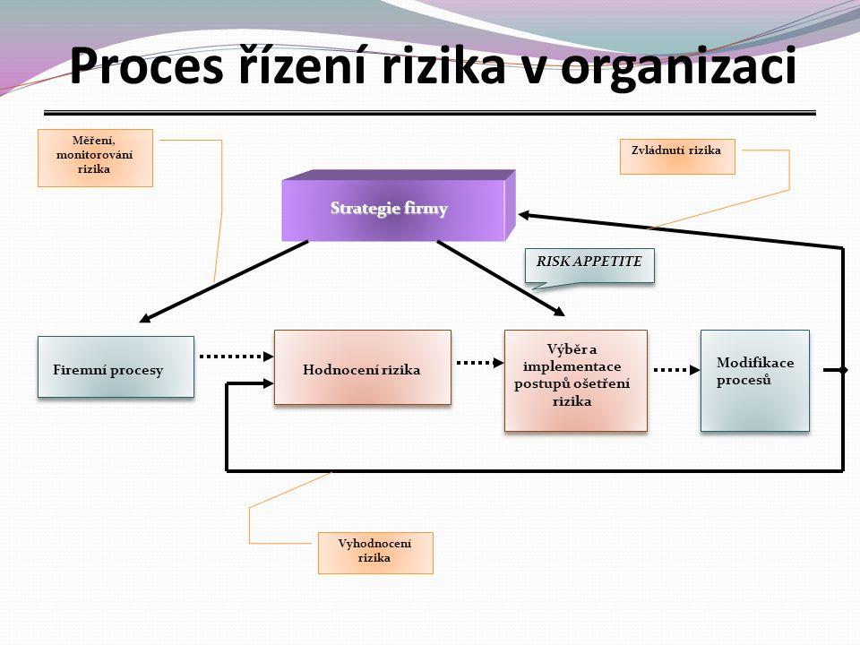 Proces řízení rizika v organizaci