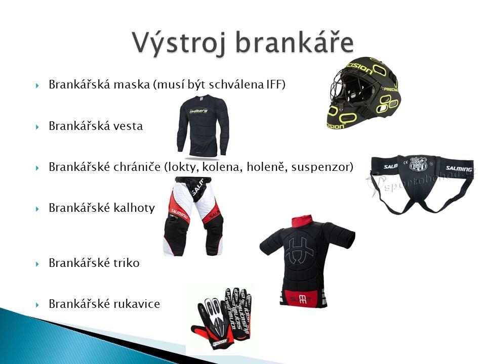 Výstroj brankáře Brankářská maska (musí být schválena IFF)