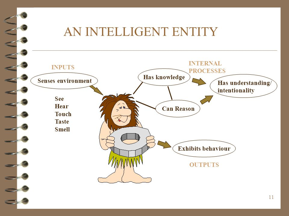 AN INTELLIGENT ENTITY INTERNAL INPUTS PROCESSES Has knowledge