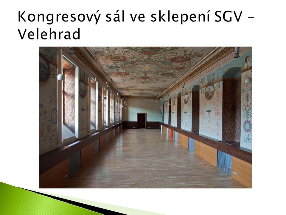 Kongresový sál ve sklepení SGV – Velehrad