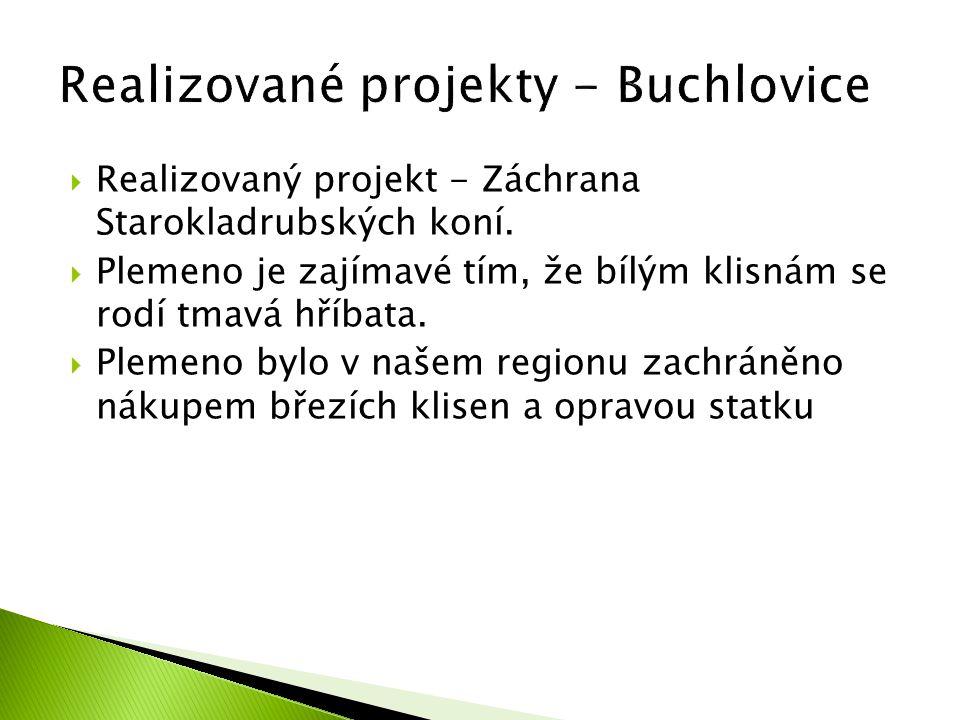 Realizované projekty - Buchlovice