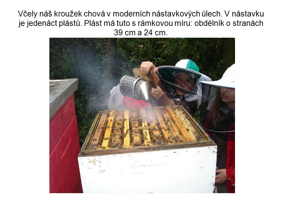 Včely náš kroužek chová v moderních nástavkových úlech