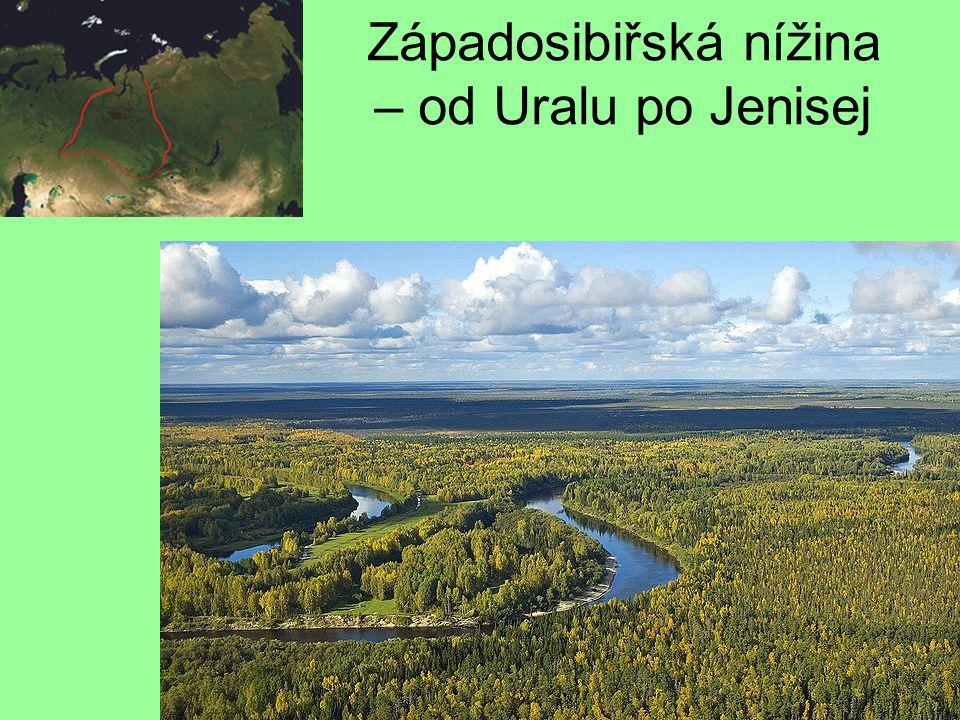 Západosibiřská nížina – od Uralu po Jenisej