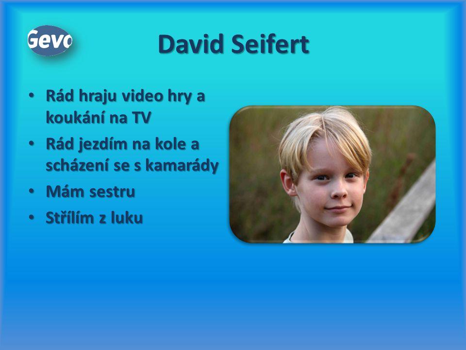 David Seifert Rád hraju video hry a koukání na TV