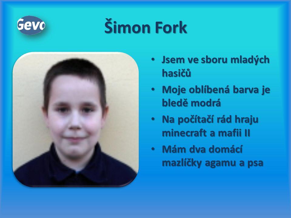 Šimon Fork Jsem ve sboru mladých hasičů