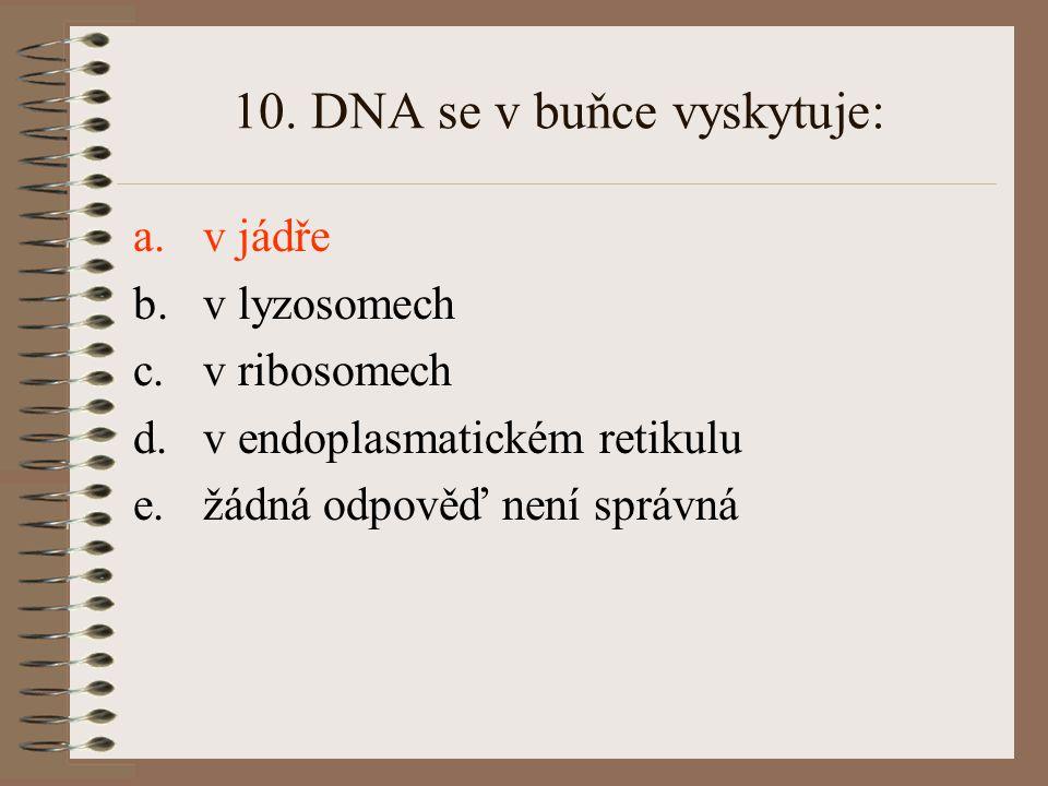 10. DNA se v buňce vyskytuje: