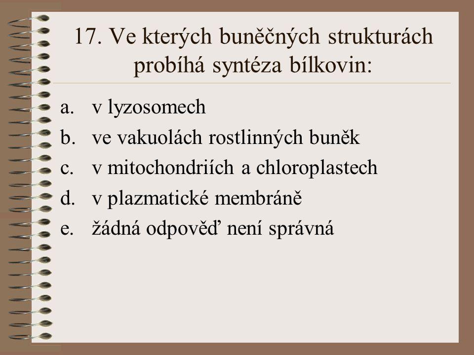 17. Ve kterých buněčných strukturách probíhá syntéza bílkovin: