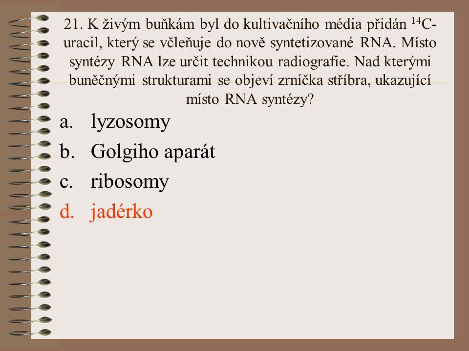lyzosomy Golgiho aparát ribosomy jadérko
