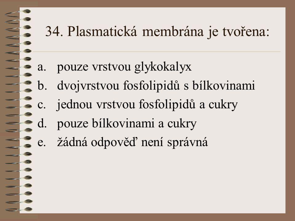 34. Plasmatická membrána je tvořena: