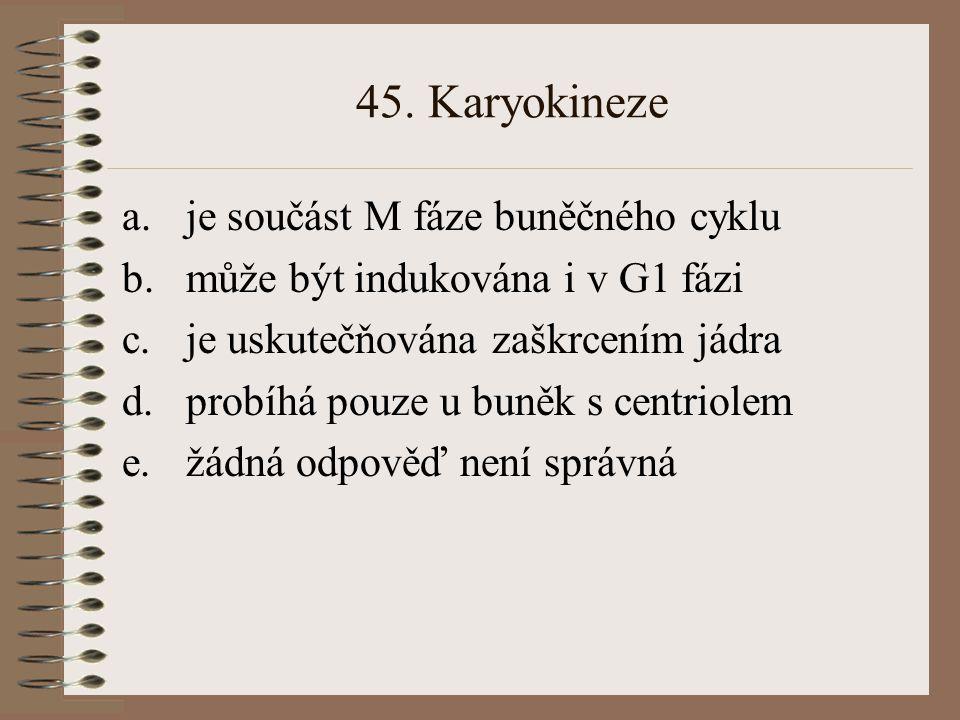 45. Karyokineze je součást M fáze buněčného cyklu