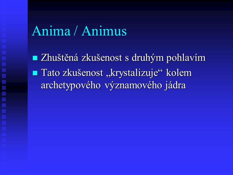 Anima / Animus Zhuštěná zkušenost s druhým pohlavím