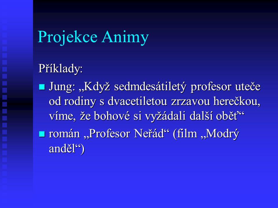 Projekce Animy Příklady: