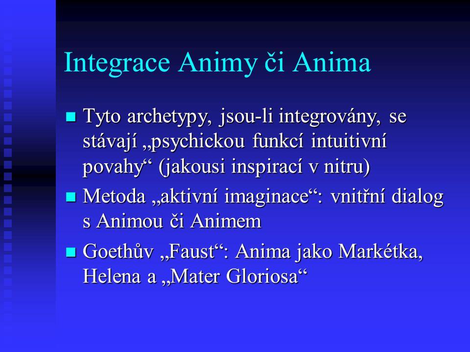 Integrace Animy či Anima