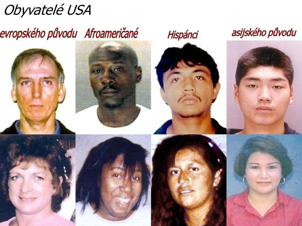 Obyvatelé USA evropského původu Afroameričané asijského původu