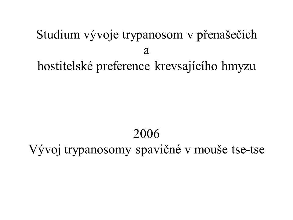 Studium vývoje trypanosom v přenašečích a