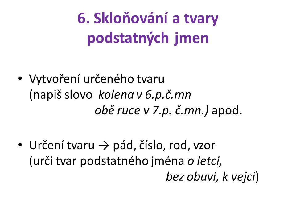 6. Skloňování a tvary podstatných jmen