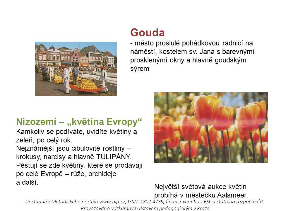 """Gouda Nizozemí – """"květina Evropy"""