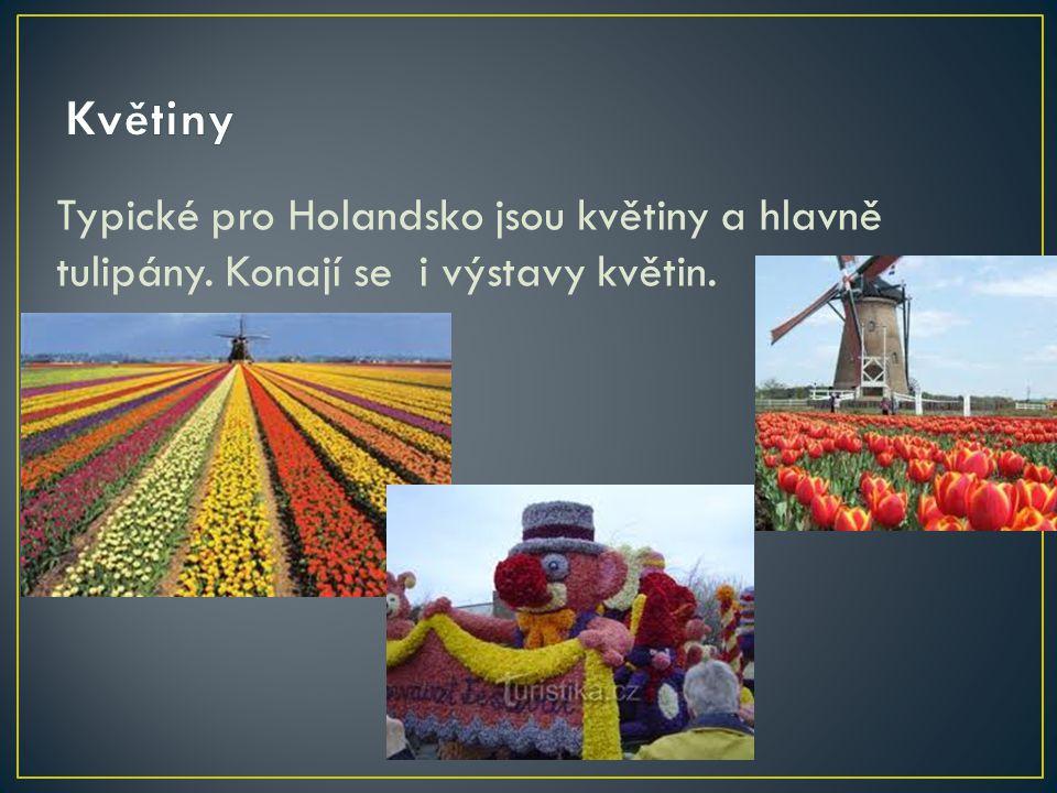 Květiny Typické pro Holandsko jsou květiny a hlavně tulipány. Konají se i výstavy květin.
