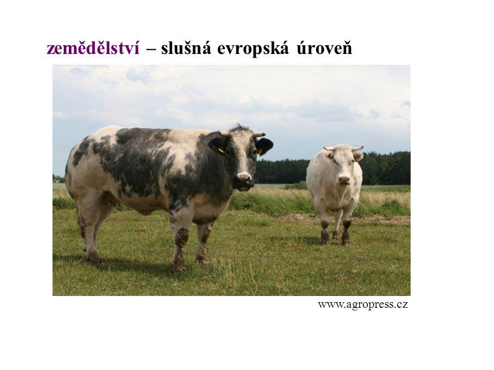 zemědělství – slušná evropská úroveň
