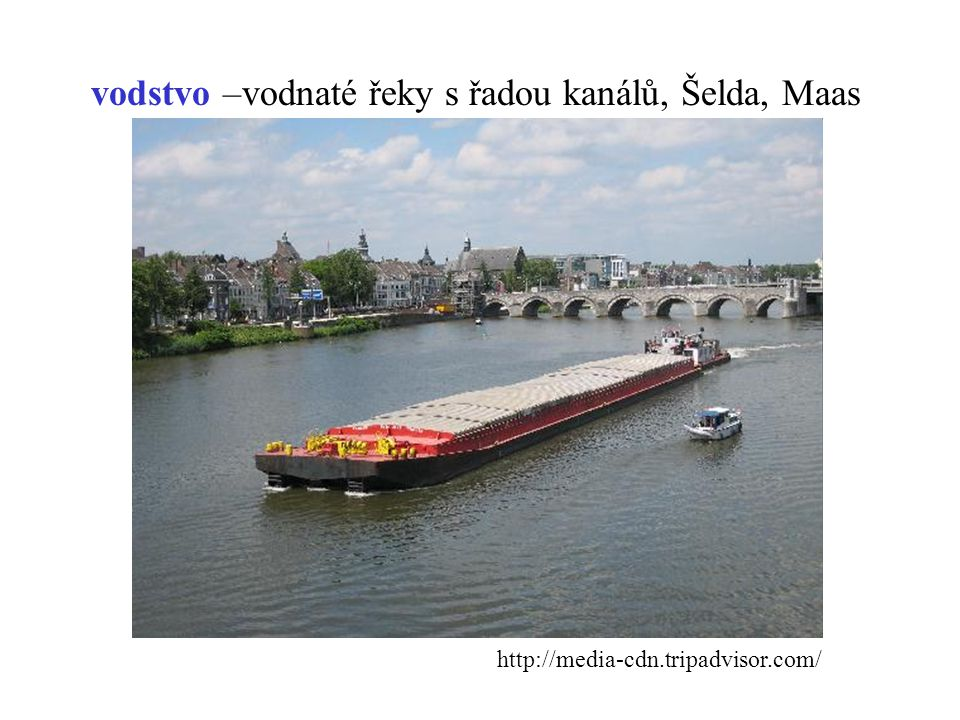 vodstvo –vodnaté řeky s řadou kanálů, Šelda, Maas