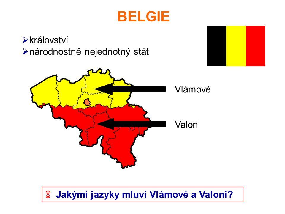 BELGIE království národnostně nejednotný stát Vlámové Valoni