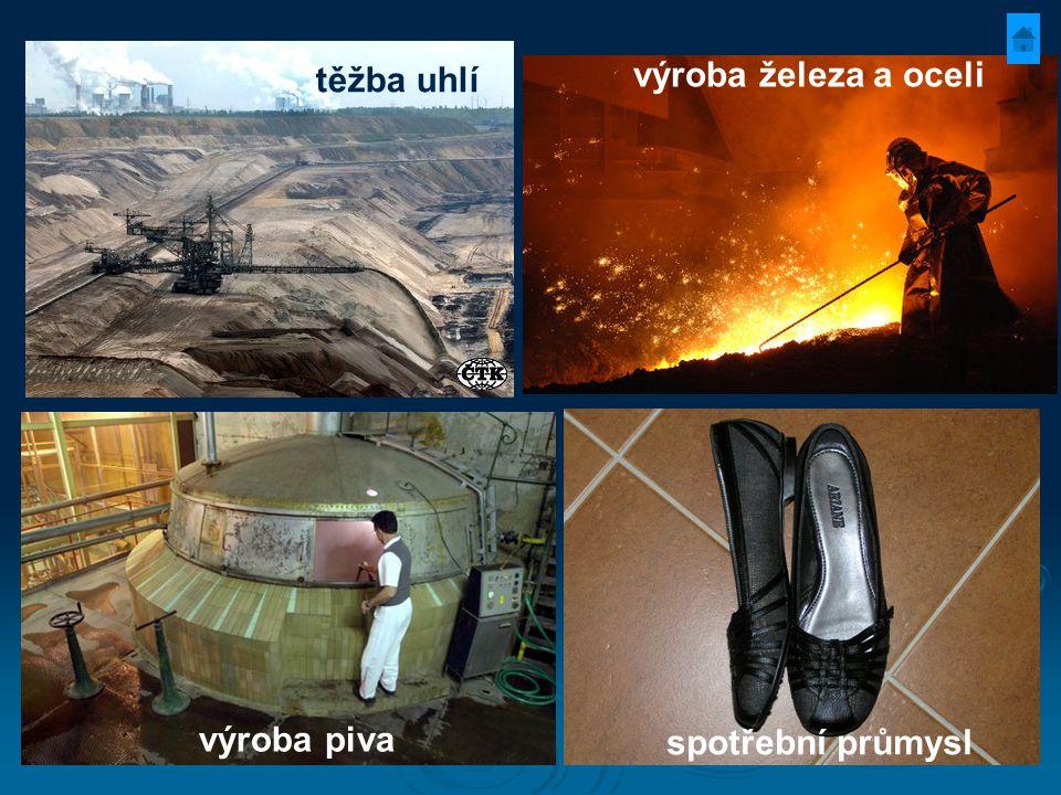 těžba uhlí výroba železa a oceli výroba piva spotřební průmysl