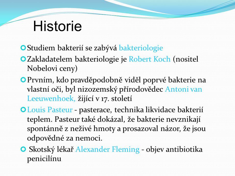 Historie Studiem bakterií se zabývá bakteriologie