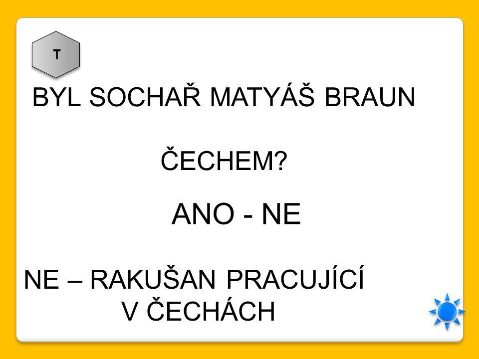 BYL SOCHAŘ MATYÁŠ BRAUN