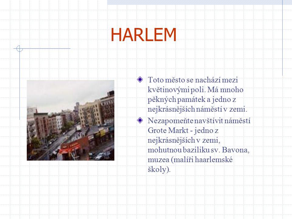 HARLEM Toto město se nachází mezi květinovými poli. Má mnoho pěkných památek a jedno z nejkrásnějších náměstí v zemi.