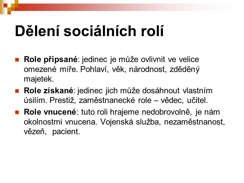 Dělení sociálních rolí